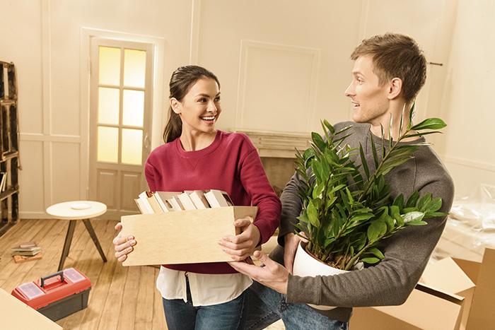 consejos transportar plantas